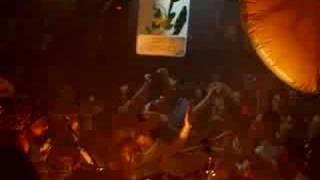 Hed Kandi video 2