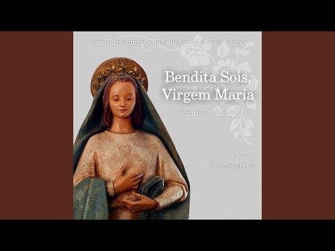 Louvada Seja a Virgem Santa Maria