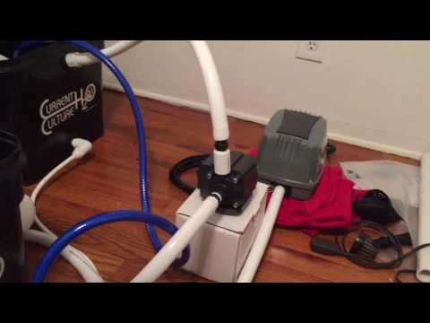 Testing the Current Culture Hydroponic UC8 System for water leaks