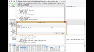 Wireshark Packet Editing