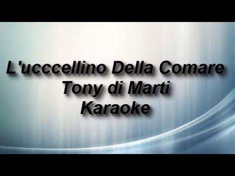L'ucccellino Della Comare Tony di Marti Karaoke by Enry