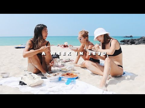 A WEEK IN JEJU • Island Life with the Locals🐬