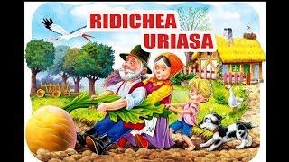 RIDICHEA URIASA - POVESTI PENTRU COPII - BASME in LIMBA ROMANA