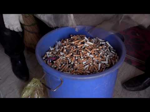 How are Cigarette buds recycled and reused in India?