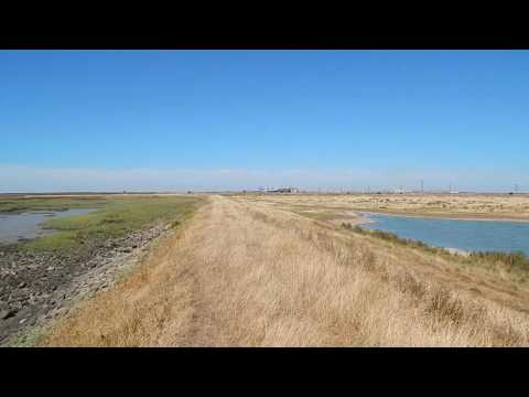 The Saxon Shore Way: Lower Halstow to Swale 23 August 2016