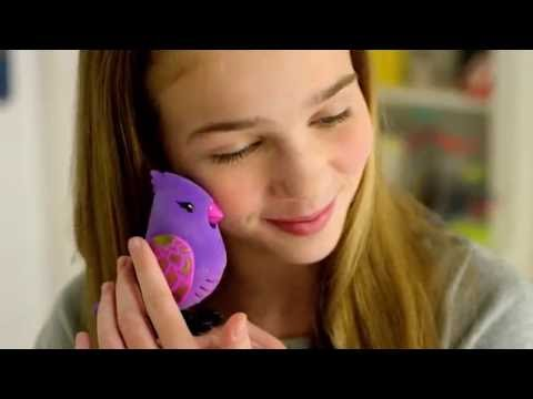 Little Live Pets Birds New Exotic Song Birds TV Commercial