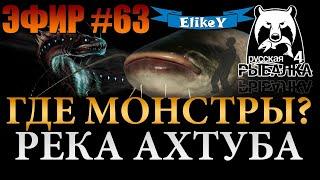 Ищем Монстра! • Где ловить? • Поймаем Трофейного Сома? • Река Ахтуба • Русская Рыбалка 4 • ЭФИР #63