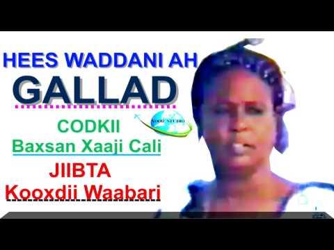 Hees Waddani Qaaraami ah Baxsan Xaaji Cali Gallad 1977 HD thumbnail