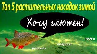 Рыболовный ТОП-5, Насадок на зимней рыбалке.Насадки и наживки зимой.(Использование растительных насадок на рыбалке зимой,не является приоритетом у большинства рыбаков и многи..., 2015-12-20T14:00:01.000Z)