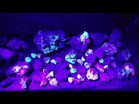 Collecting Fluorescent Zincite, Willemite Crystals in Palmerton, PA