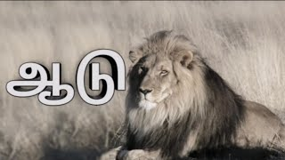 Download Tamil Motivational Whatsapp Status Videos - Dcyoutube