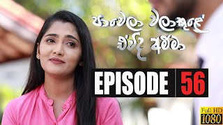 Paawela Walakule | Episode 56 23rd February 2020 Thumbnail