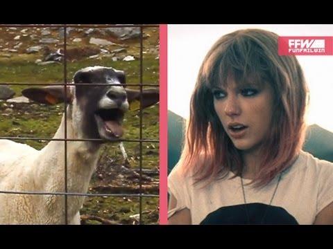 Taylor Swift I Knew You Were A Goat Original Ffw Youtube