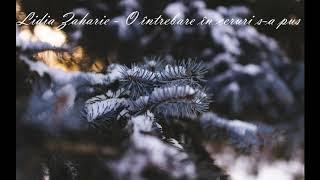 Lidia Zaharie - O întrebare în ceruri s-a pus