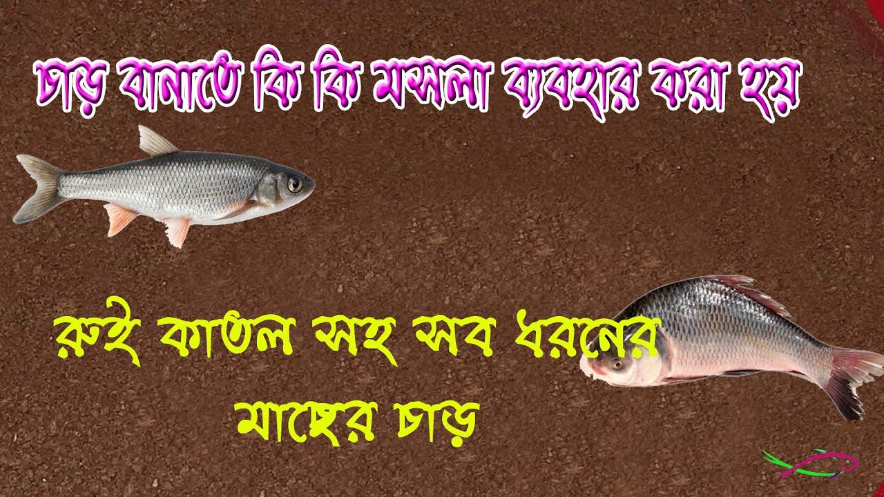 নিজেই কিভাবে মাছ ধরার চাড় বানাবেন শিখুন বিস্তারিত (পার্ট-০১) How to make fishing Char 2020 Part 01
