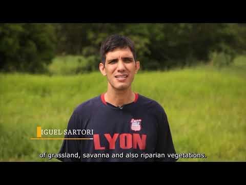 SEMEADURA DIRETA-  LEGENDADO [Inglês]