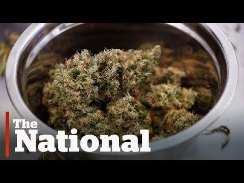 Ontario announces legal pot sales plans