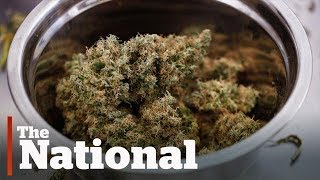 Ontario announces legal pot sales plans