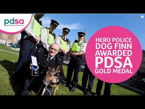 Hero Police Dog Finn awarded PDSA Gold Medal