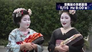 【4K】恋舞妓の京都慕情【2020年】