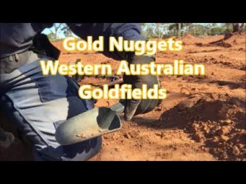 Gold Prospecting In Western Australian & With General Hercules 5/7/19