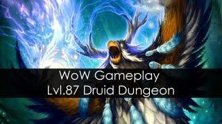 wow mists of pandaria dungeon mogo shan palace lvl 88 druid damage noob edition hd