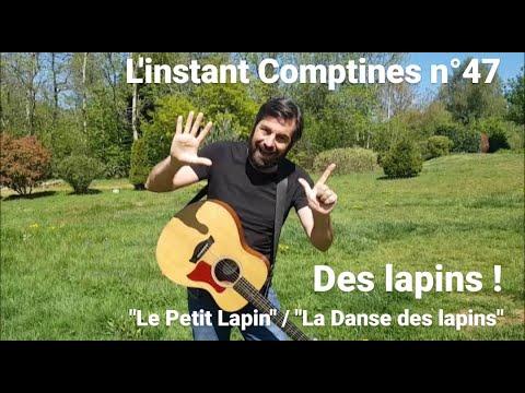 L'instant Comptines N°47 Avec REMI : Des Lapins !