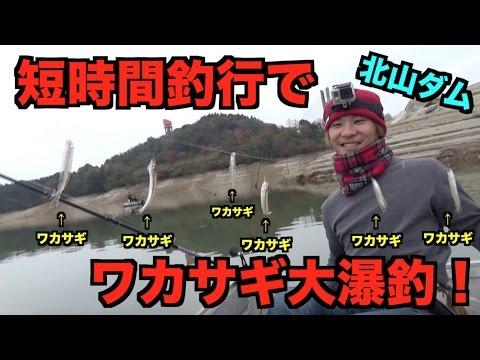 佐賀県北山ダムでワカサギ大爆釣!!