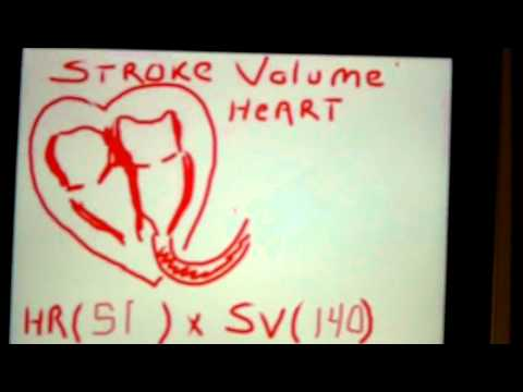 What is Cardiac Output?