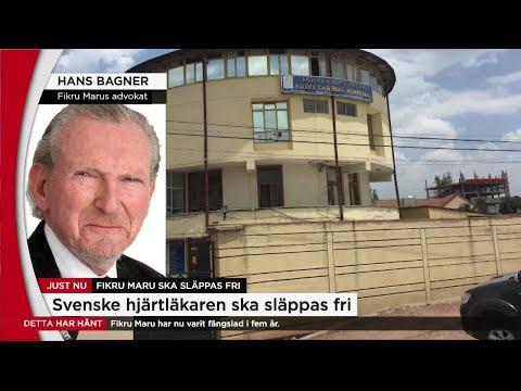 Svenska hjärtläkaren släpps från fängelse i Etiopien - Nyheterna (TV4)