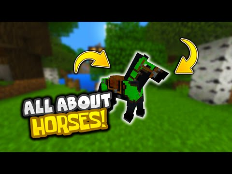 ALL ABOUT HORSES IN MINECRAFT PE - Taming, Dyeing Armor, Leads, And More! (Pocket Edition)