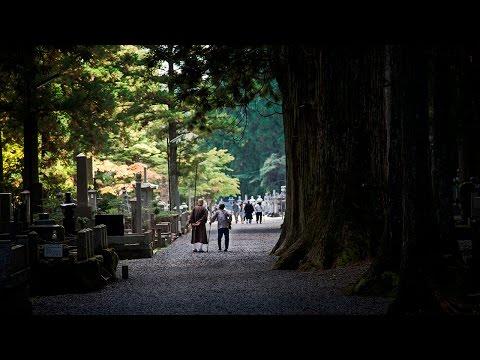 Koya-san in Wakayama Prefecture | Japan Vlogs, Day 16