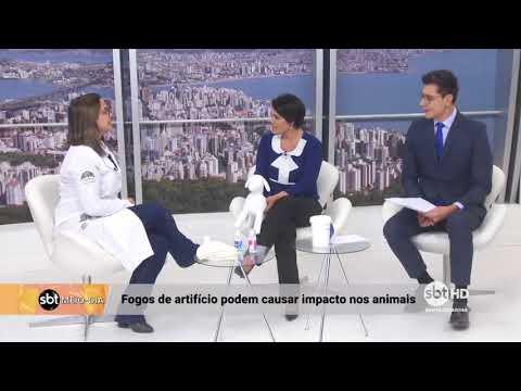 Entrevista com Priscila Gomes sobre os efeitos dos fogos de artifício nos animais