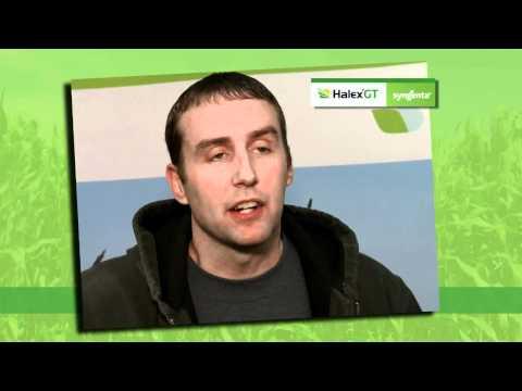 Halex GT - Excellent Weed Control