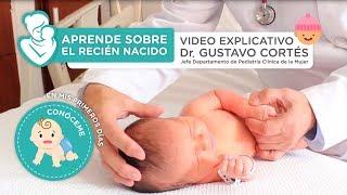 Aprende sobre el recién nacido - Vídeo explicativo