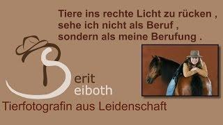 Tierfotografie Berit Seiboth