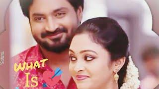 What is Love? #SM #saravananmeenatchi #serial #status #vijayTV