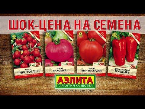 Шок-цена на семена - от Агрофирмы Аэлита.