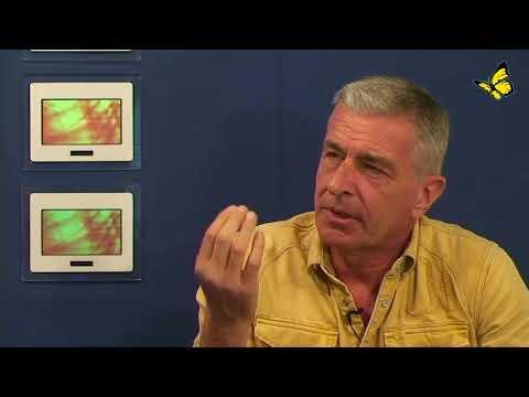 Gesundung eines Querdenkers - Michael Vogt im Gespräch