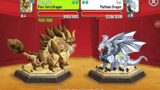 Dragon city android gameplay