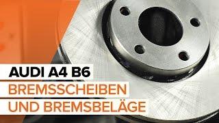 Installation Motoraufhängung hinten rechts AUDI A4: Video-Handbuch