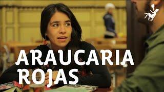 Araucaria Rojas en Ojo en Tinta -