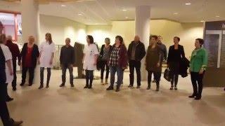 Flashmob Melodysingers in Isala ziekenhuis