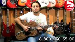 Акустическая гитара GREG BENNETT D4