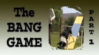 Bang Game Part 1- Teeter Agility Training