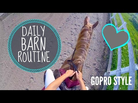DAILY BARN ROUTINE |GOPRO STYLE