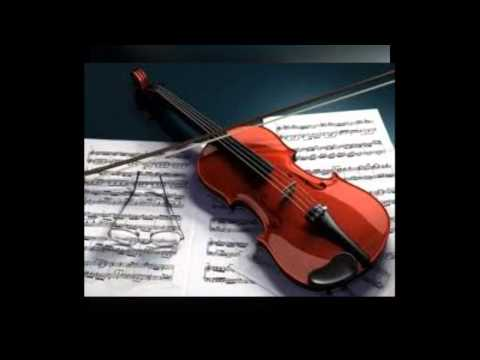 Musical Instruments Insurance