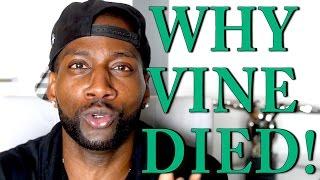 WHY VINE DIED!