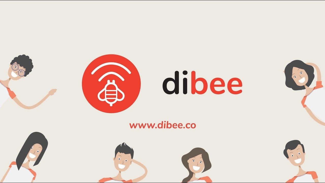 Dibee Introduction