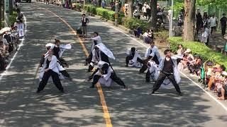 yosakoiソーランチーム白縫「Indra」2019.8.3 彩夏祭 公園北会場2回目